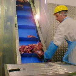 Food Elevator Conveyors