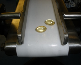 Small Conveyor image for pharmaceutical company