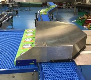 modular belt transfer conveyor